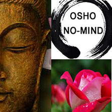 Therapy Group at osho moulshree